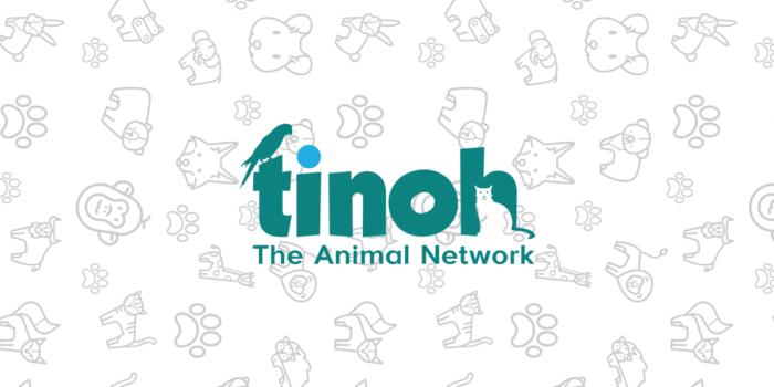 Tinoh Webseite